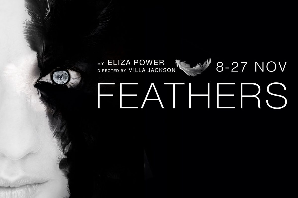 Feathers by Eliza Power