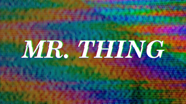 Mr Thing