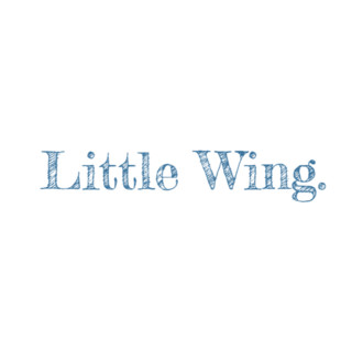 Little Wing Film Festival: Awards
