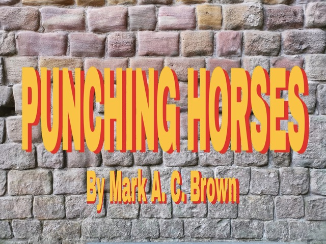 Punching Horses by Mark A.C. Brown