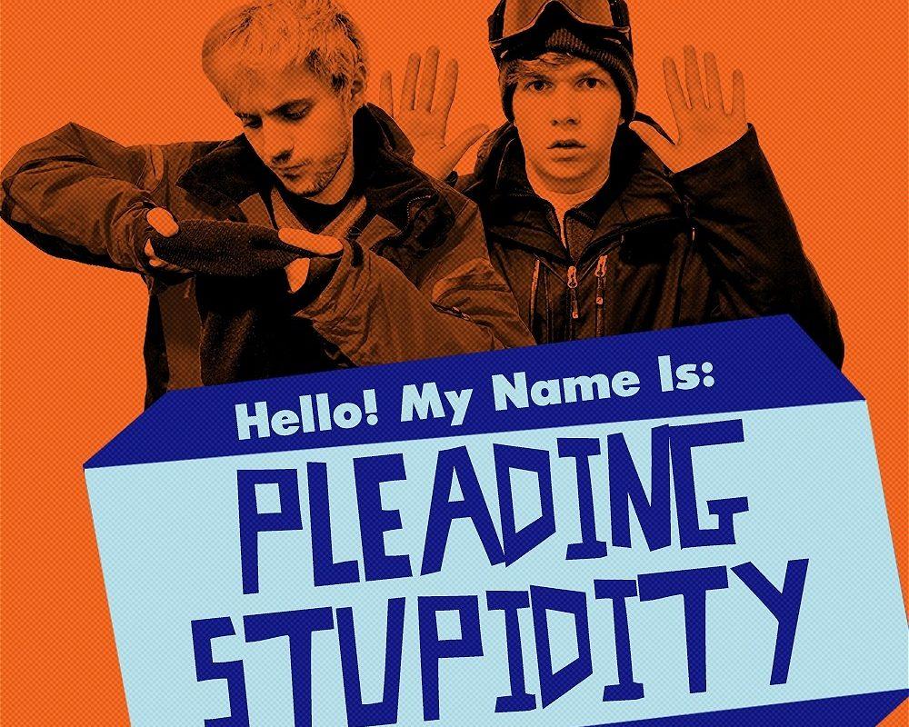 Pleading Stupidity